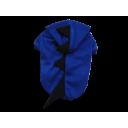 Áo khủng long xanh dương
